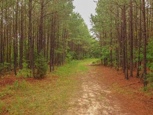 330 Acres In Anson County : Peachland : Anson County : North Carolina