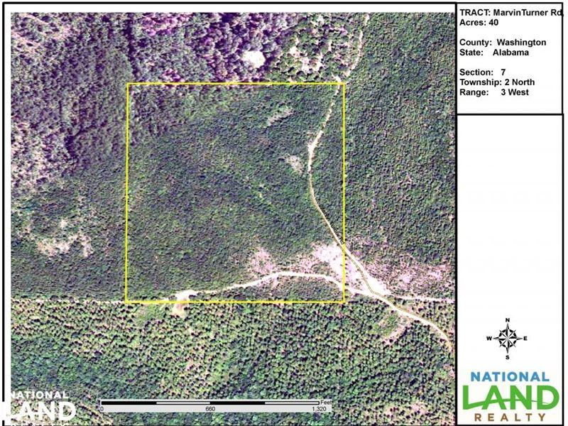 Marvin Turner Road Timber Investmen : Deer Park : Washington County : Alabama