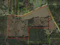 Home Site Or Mini Farm : Noxapater : Winston County : Mississippi