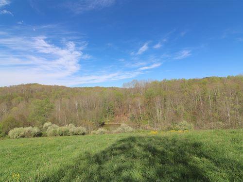 Salem Hollow Rd - 80 Acres : New Straitsville : Hocking County : Ohio