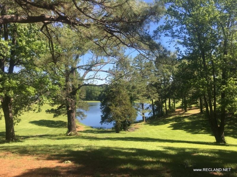 320 Ac Pasture, Timberland : Natchitoches : Natchitoches Parish : Louisiana