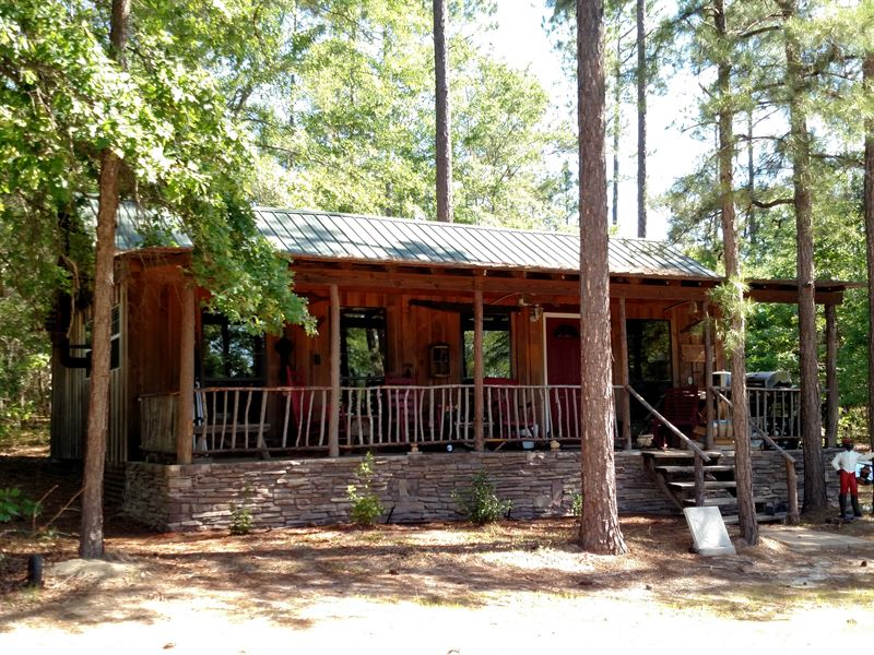 95 Acres With Cabin And Creek : Plains : Webster County : Georgia