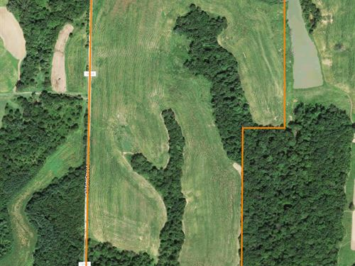 Great Investment Farm : El Dara : Pike County : Illinois