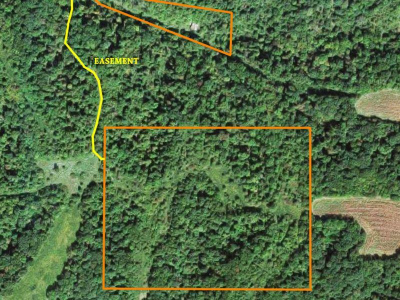 Prime Hunting Farm : Hamburg : Calhoun County : Illinois