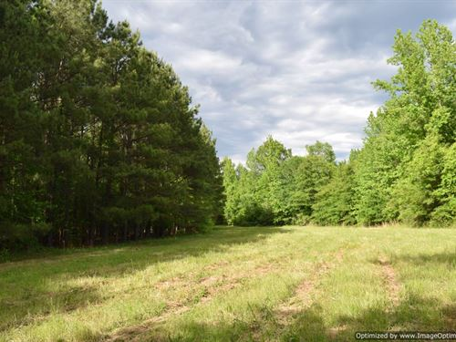 200+/- Acres : Lexington : Holmes County : Mississippi