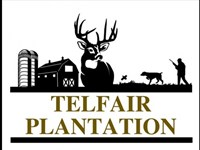 Telfair Plantation 558 Ac : Warrenton : Warren County : Georgia