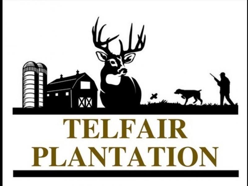 Telfair Plantation - New Pricing : Warrenton : Warren County : Georgia