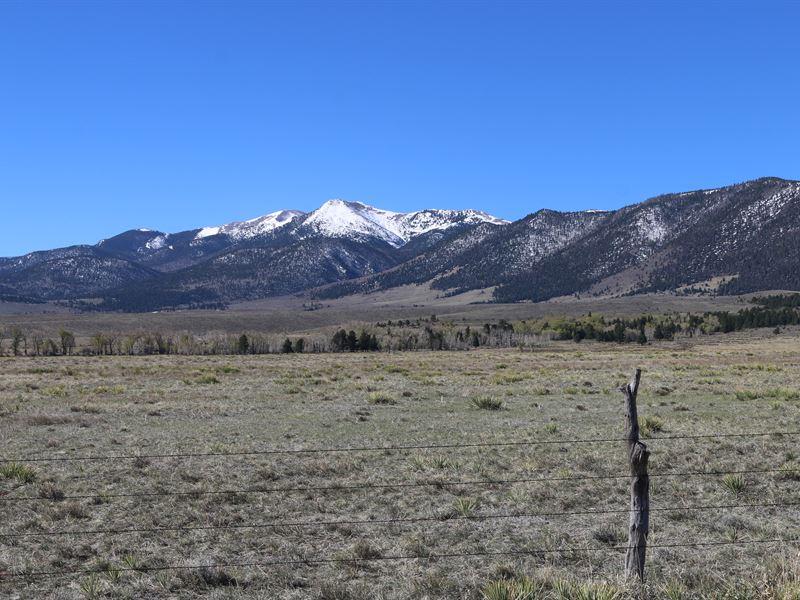 Hogans Acres : Westcliffe : Custer County : Colorado