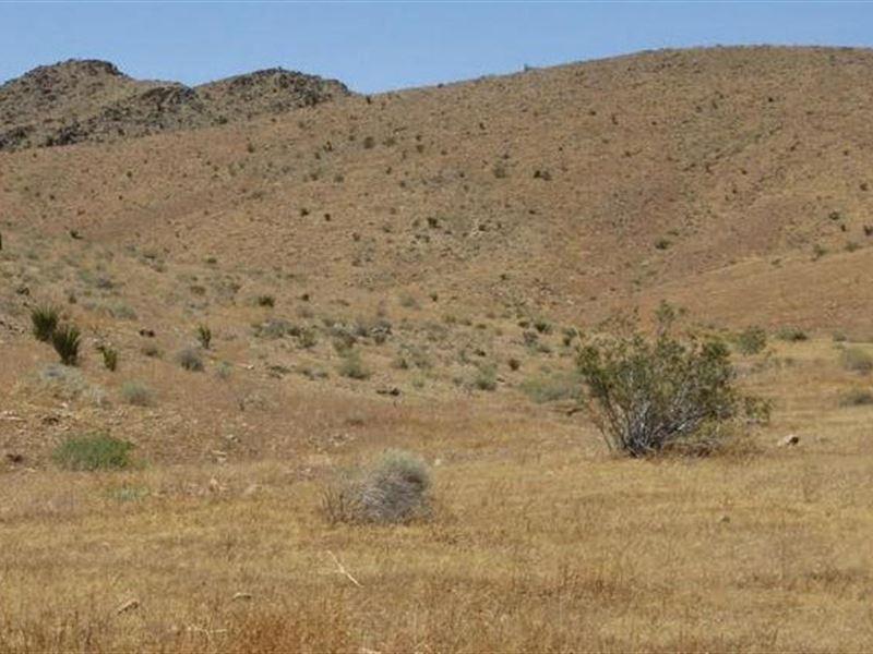 San Bernardino Co, Ca $7,000 Neg : Apple Valley : San Bernardino County : California