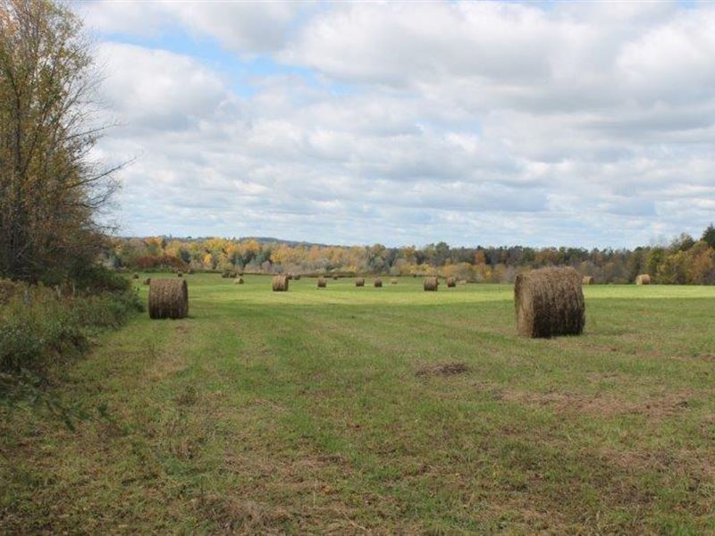 54 Acres Farmland Norway Ny Views : Norway : Herkimer County : New York