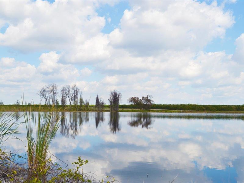 Little Lake Gum Lakefront Homesites : Lake Wales : Polk County : Florida