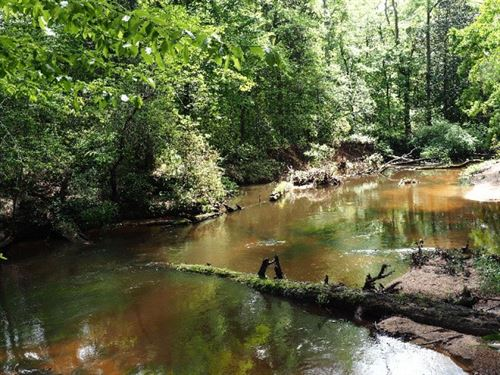 Hunting Timber Land Waterfront For : Magnolia : Pike County : Mississippi