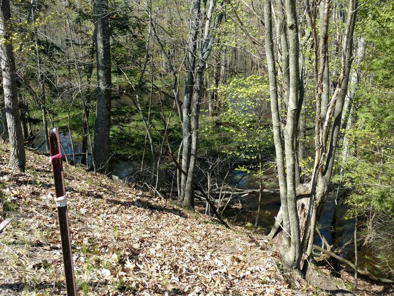 Pere Marquette River 34 : Custer : Mason County : Michigan