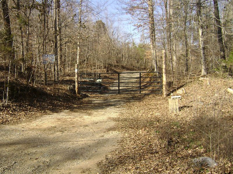 Phifer Mine Road Tract : Mc Minnville : Warren County : Tennessee