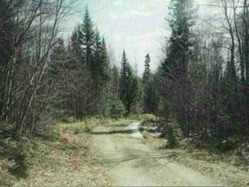 40 Acres Off Ned Lake Rd. 1101276 : Michigamme : Baraga County : Michigan