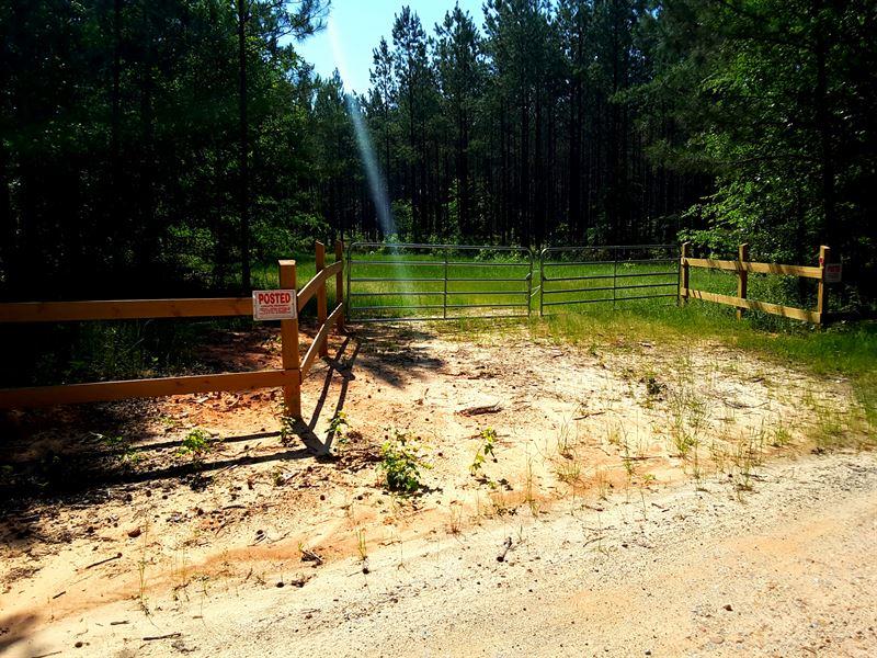 Beautiful Hunting/Timber Investment : Sharon : Taliaferro County : Georgia