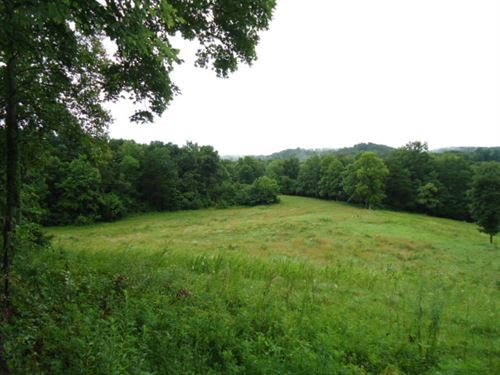 21.34 Acres Pastures, Wooded : Hilham : Overton County : Tennessee