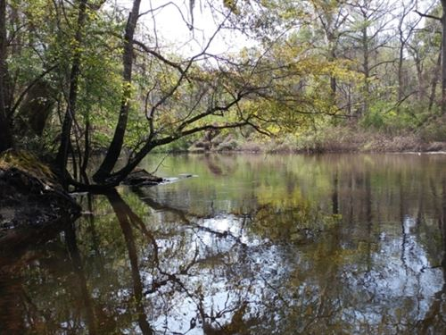 Bunn Lake Tract : Millen : Jenkins County : Georgia