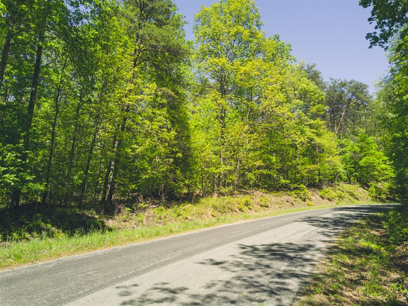 Perfect For Hunting And Fishing : Chatham : Pittsylvania County : Virginia