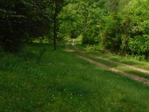 79 Acres Wooded In Clay Co : Whitleyville : Clay County : Tennessee