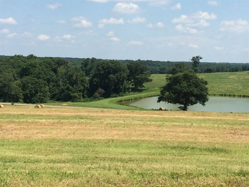 10 Acres Of Beautiful Pasture : Troy : Pike County : Alabama