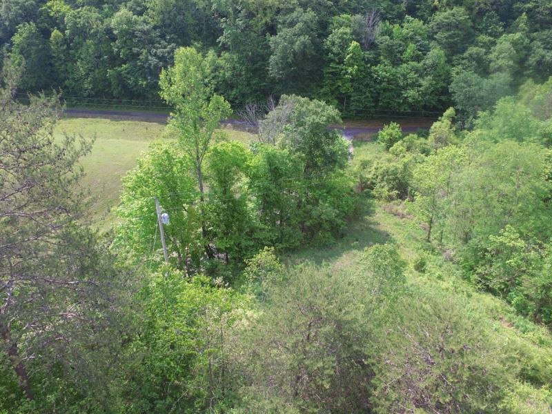 20+ Unrestricted Acres : Bean Station : Grainger County : Tennessee