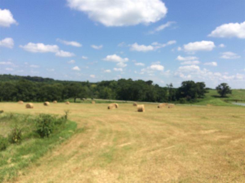 10 Acres With Beautiful Homesites : Troy : Pike County : Alabama