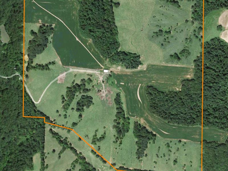 Excellent Hunting Farm : Fishhook : Pike County : Illinois