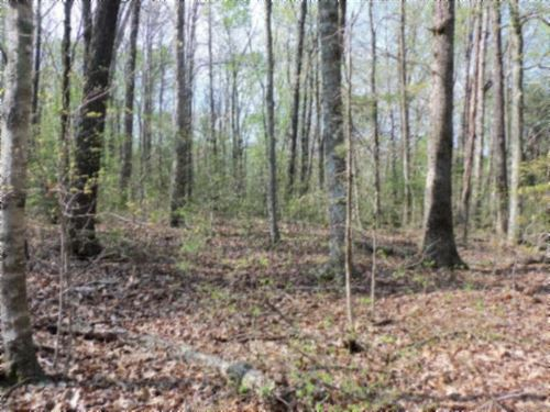 131.30 Wooded In Fentress Co. : Jamestown : Fentress County : Tennessee
