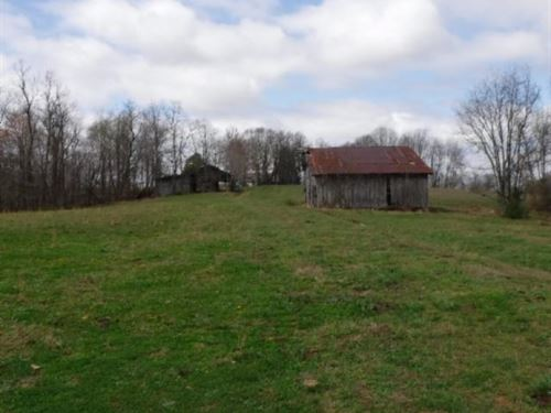 68.30 Acres Pastures In Macon Co. : Lafayette : Macon County : Tennessee