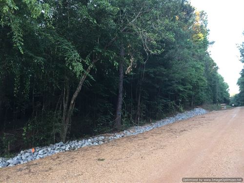 Private Hunting Property : Smithdale : Franklin County : Mississippi
