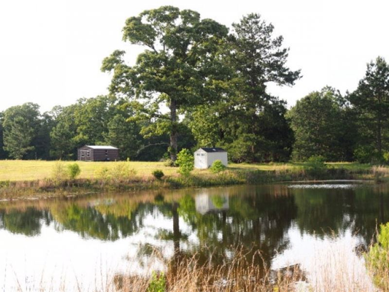 Hunting Pasture Land 20 Acres Pond : Summit : Pike County : Mississippi