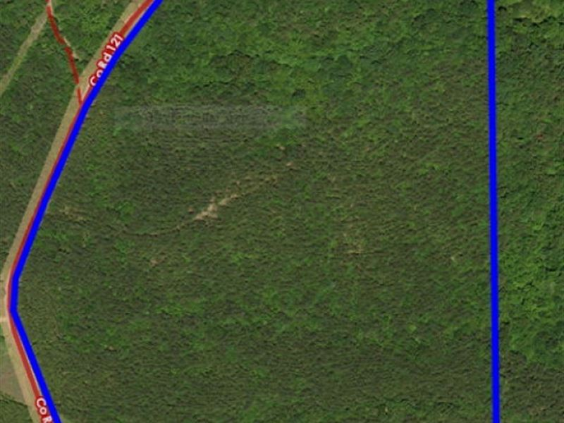 38 Acres Water Valley, Ms Near Oxfo : Water Valley : Yalobusha County : Mississippi