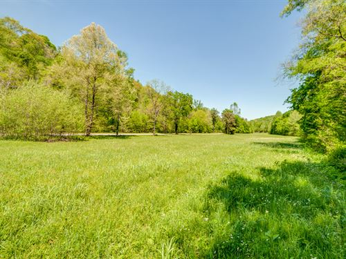 518 Acre Hunting Tract : Mount Pleasant : Maury County : Tennessee