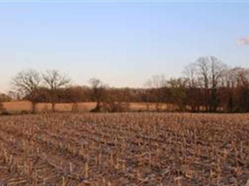 Level Tillable & Mature Oak Woods Ranch for Sale