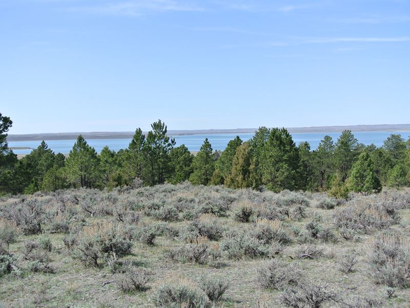 Keyhole Reservoir 40 : Pine Haven : Crook County : Wyoming