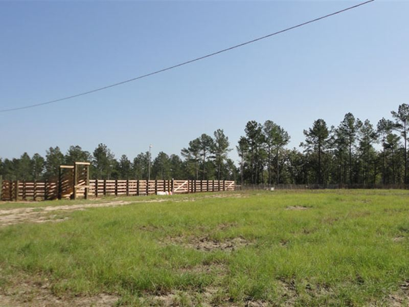 Pulaski County Tract : Ranch for Sale : Hawkinsville ...