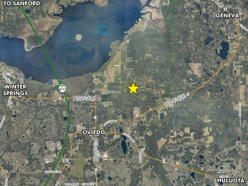 Black Hammock Tree Farm : Oviedo : Seminole County : Florida