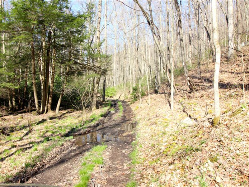 455+/- Acres Of Land, Private : Bellefonte : Centre County : Pennsylvania