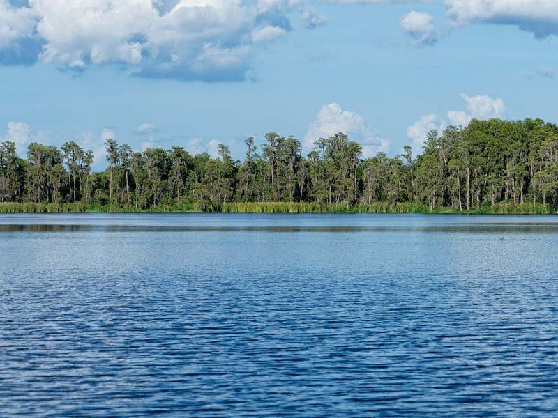 Lakefront Liquidation Orlando : Groveland : Lake County : Florida
