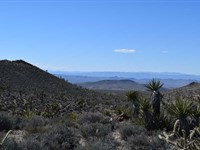 Exceptional Land Buying Opportunity : White Hills : Mohave County : Arizona