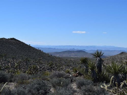Mtn View Land Liquidation : White Hills : Mohave County : Arizona