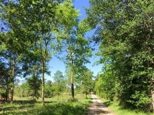 18.99 Acres Old Sign Road : Huntsville : Walker County : Texas