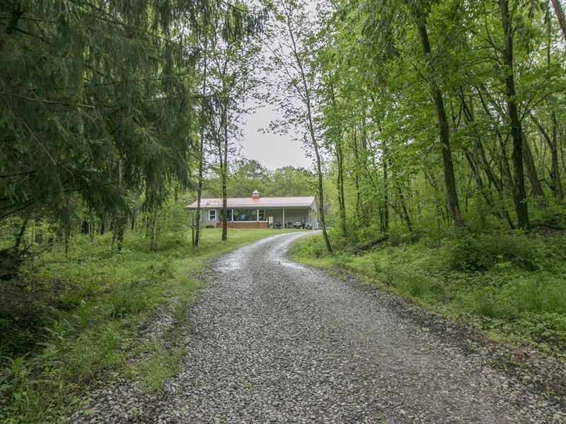 Valley Rd - 42 Acres : Zanesville : Muskingum County : Ohio