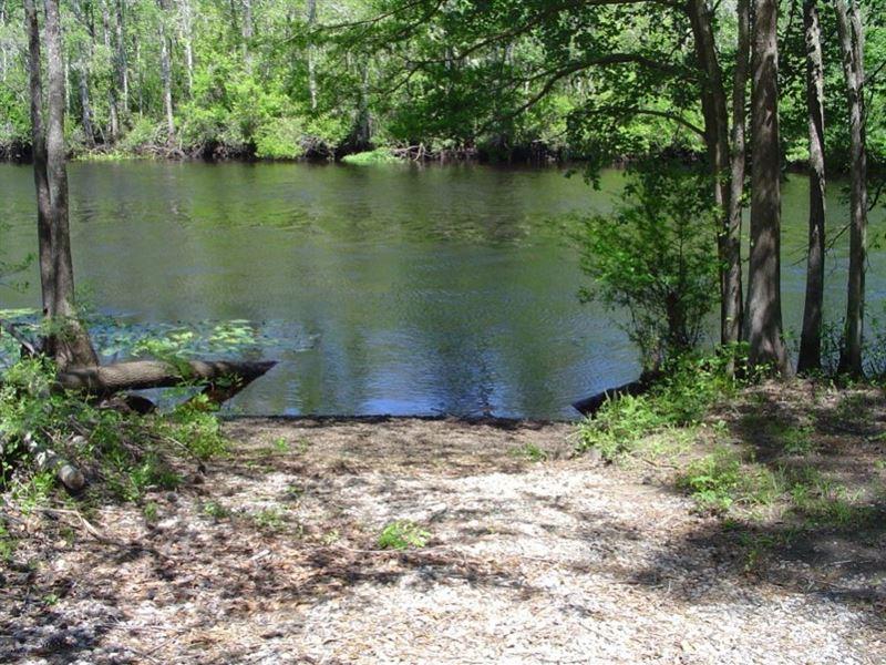 Mingo Creek Plantation : Georgetown : Georgetown County : South Carolina
