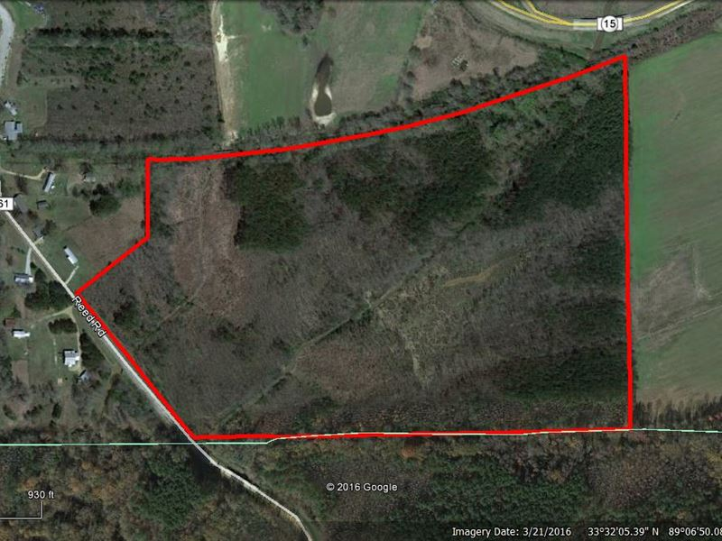 Land For Sale In Mathiston, Ms : Mathiston : Webster County : Mississippi