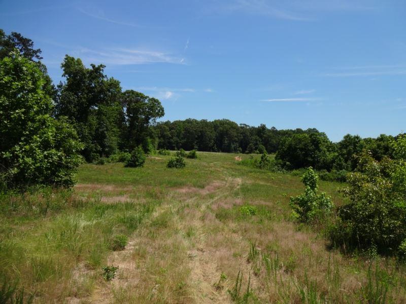 + / 43.02 Acres Spearman Road : Pelzer : Anderson County : South Carolina