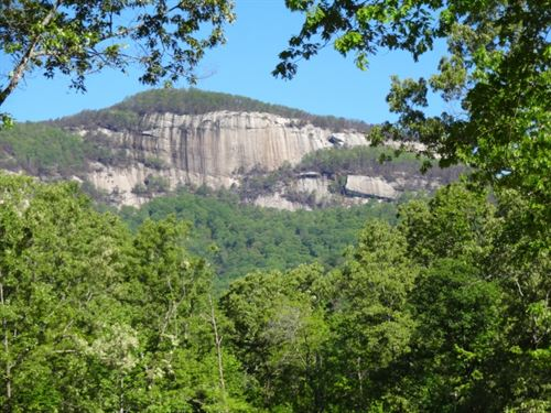 39.63 Acres Hwy 11 Scenic View Tabl : Pickens : South Carolina