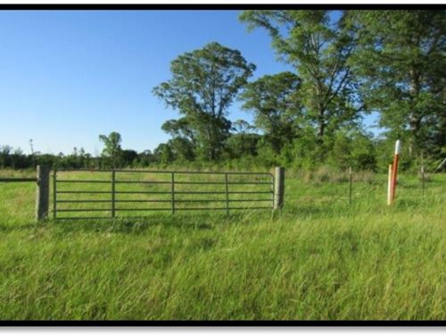 27 Acres In Jefferson Davis County : Prentiss : Jefferson Davis County : Mississippi