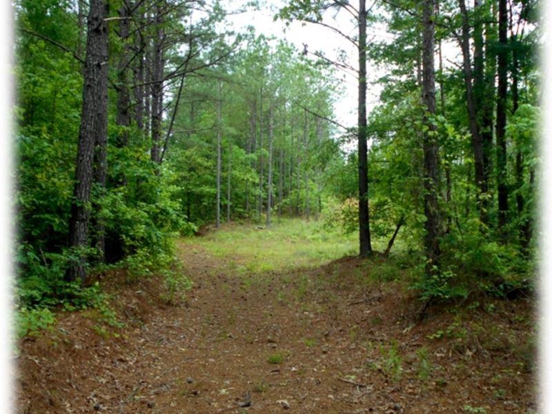 177 Acres In Yalobusha County : Water Valley : Yalobusha County : Mississippi